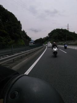 Sakuran8