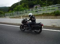 Sakuran40